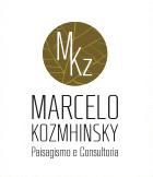 Marcelo Kozmhinsky